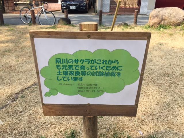 夙川4.JPG