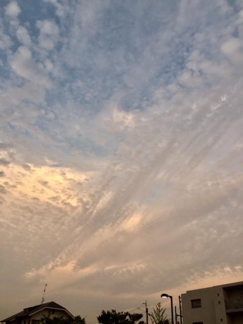 東の空.jpg