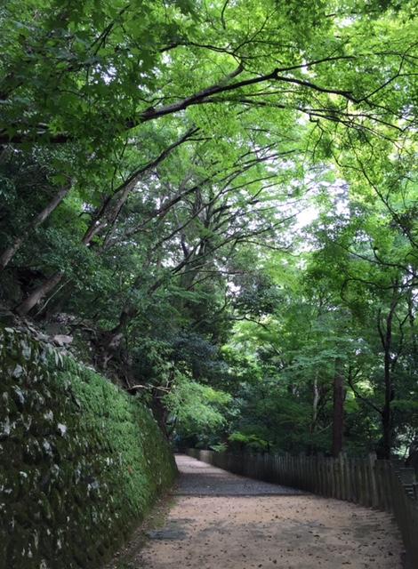 永源寺4.jpg