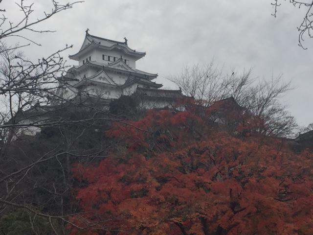 姫路城7.JPG