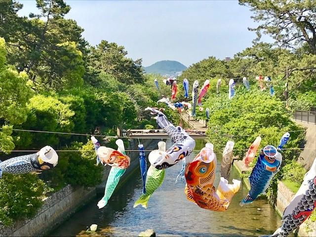 鯉のぼり2.jpg